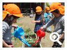 野菜・果物・花の栽培